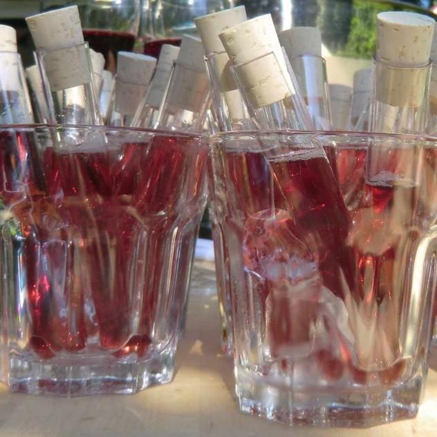 privates Tasting mit Champagner und Franciacorta